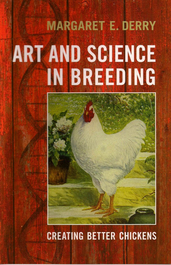 Art and Science in Breeding: Creating Better Chickens